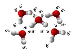 Interazioni dipolo dipolo fra molecole di acqua